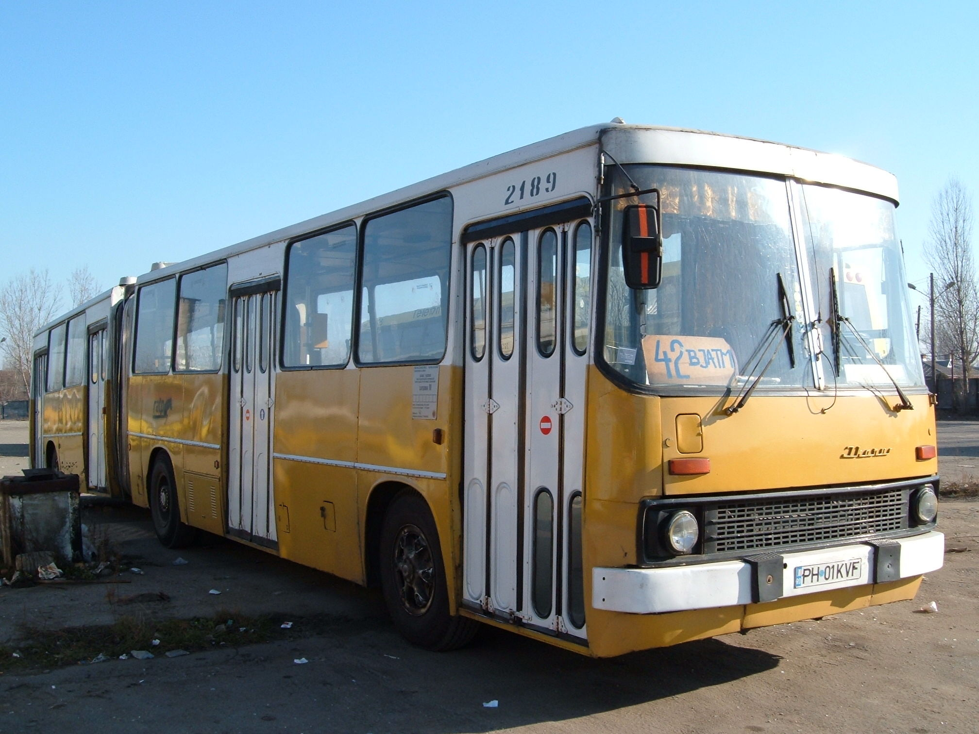 2189. Bus Ikarus on line Dp