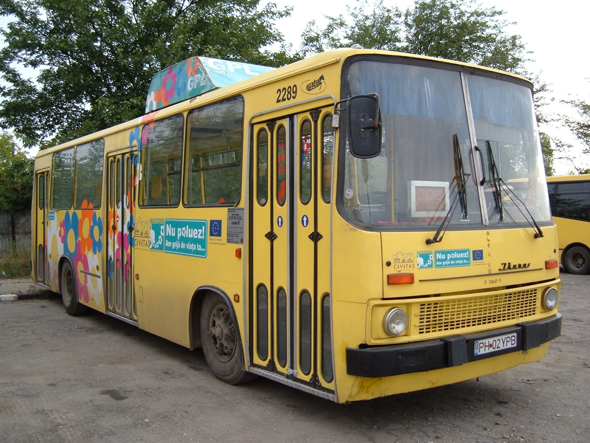 2289. Bus Ikarus on line Dp
