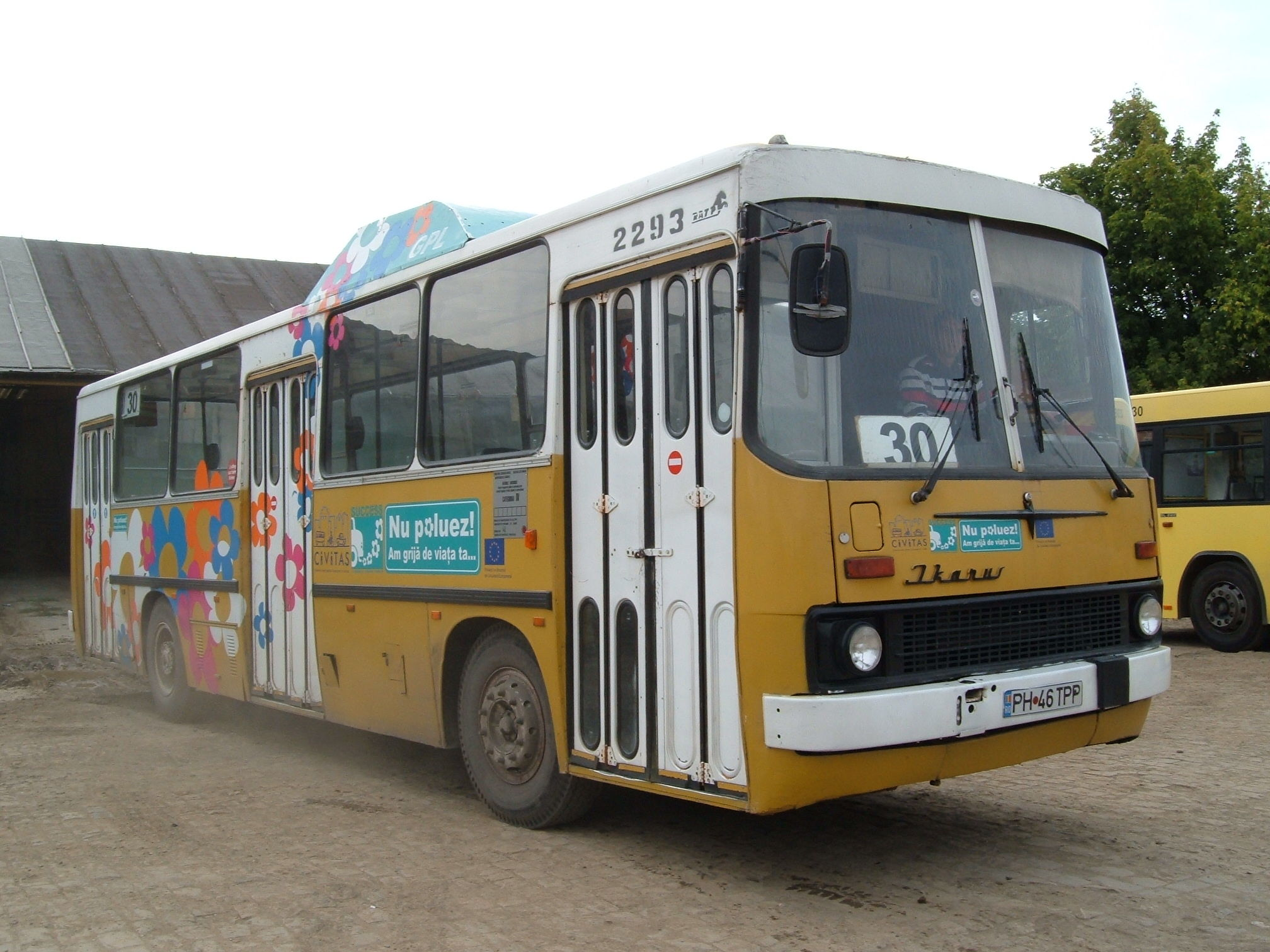 2293. Bus Ikarus on line Dp